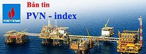 pvn-index