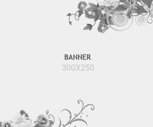 demo-banner-300x250