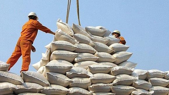 Phó Thủ tướng yêu cầu báo cáo việc mở tờ khai xuất khẩu gạo