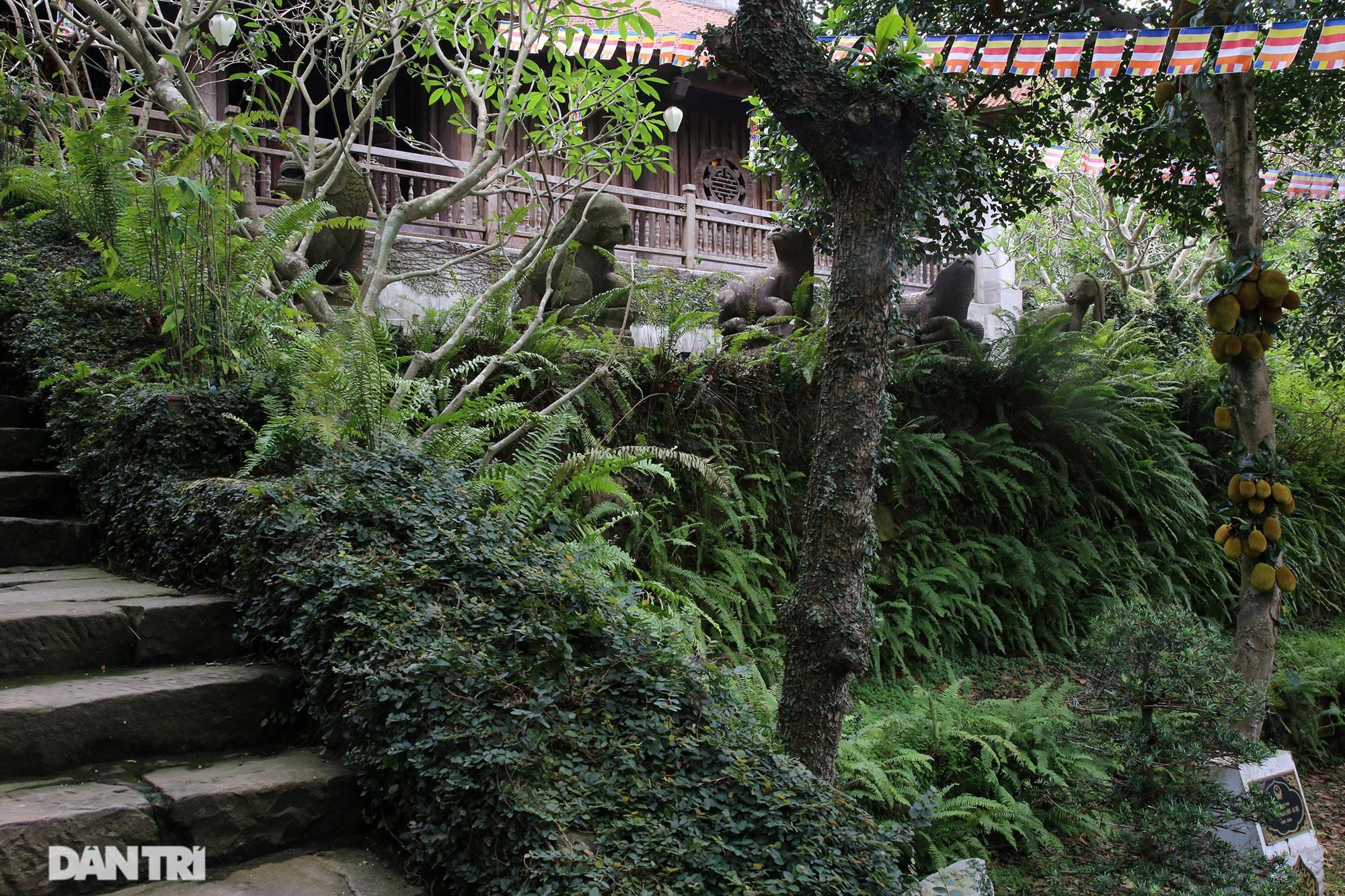 Kỳ lạ 10 linh thú đá nghìn năm tuổi canh gác chùa Phật Tích - 15