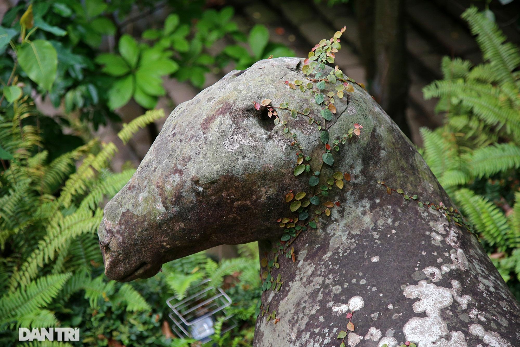 Kỳ lạ 10 linh thú đá nghìn năm tuổi canh gác chùa Phật Tích - 9