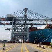 Nhiều tập đoàn hàng đầu thế giới đổ tiền kinh doanh cảng biển Việt Nam