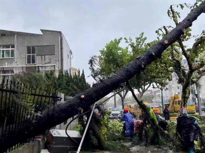 """Miền Đông Trung Quốc gồng mình chống bão sau lũ """"nghìn năm có một"""""""
