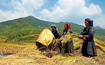 Lập Hội đồng thẩm định Chương trình MTQG phát triển KTXH miền núi