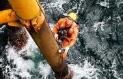 """Vietsovpetro luôn xứng đáng là """"cái nôi"""" đào tạo cán bộ ngành dầu khí Việt Nam"""