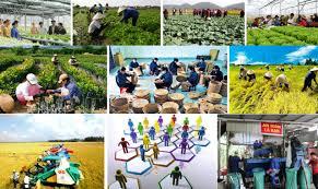 Đến 2025, thành lập mới 10.000 tổ chức kinh tế tập thể