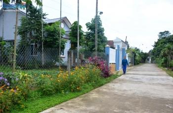 Huyện Tư Nghĩa (Quảng Ngãi) đạt chuẩn nông thôn mới