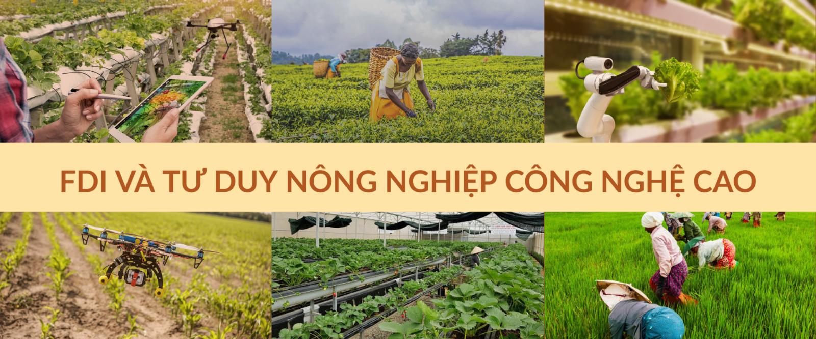 FDI và tư duy nông nghiệp công nghệ cao