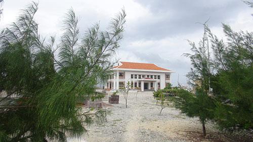 Trên đảo Phan Vinh A có khá nhiều các loại cây xanh.