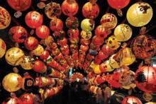 Những kỷ lục độc đáo Việt Nam 2015