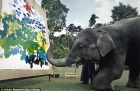 [VIDEO] Cận cảnh chú voi dùng vòi vẽ tranh giá ngàn đô