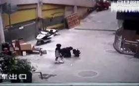[VIDEO] Đau lòng bé gái bị thiệt mạng vì anh trai đốt pháo