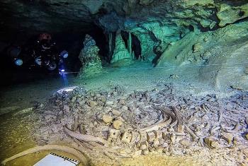 bi an ve nen van minh maya trong hang ngam o mexico