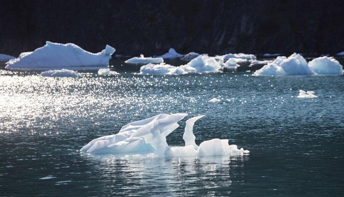Bắc Cực đang có một mùa đông ấm bất thường