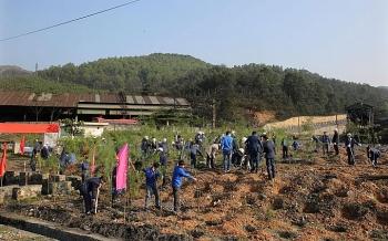 Xanh hóa môi trường khai thác mỏ