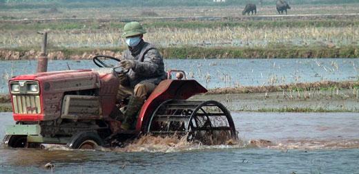 Khẩn trương nghiên cứu khai thác bể than sông Hồng