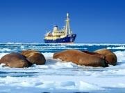 Khai thác tiềm năng dầu khí và bảo vệ môi trường Bắc Cực