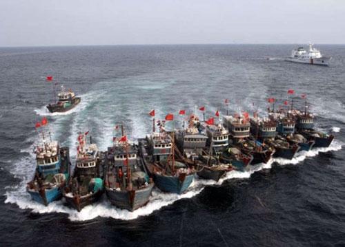 Không chỉ là dầu khí mà còn tài nguyên cá