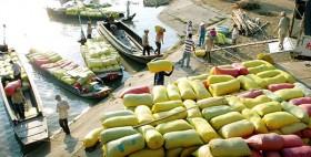 Nông nghiệp hội nhập quốc tế: Quá nhiều việc phải làm