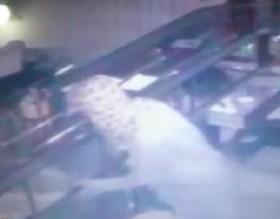 [VIDEO] Vô hiệu hóa 2 camera, phá 5 ổ khóa, tên trộm kéo lê bao tải vàng tẩu thoát