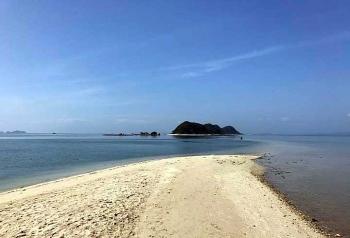Sức sống mới của đảo hoang