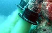 Formosa xả thải đầu độc cá chết biển Miền Trung