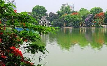 Cải tạo cây xanh hồ Gươm - cần một ứng xử văn hóa