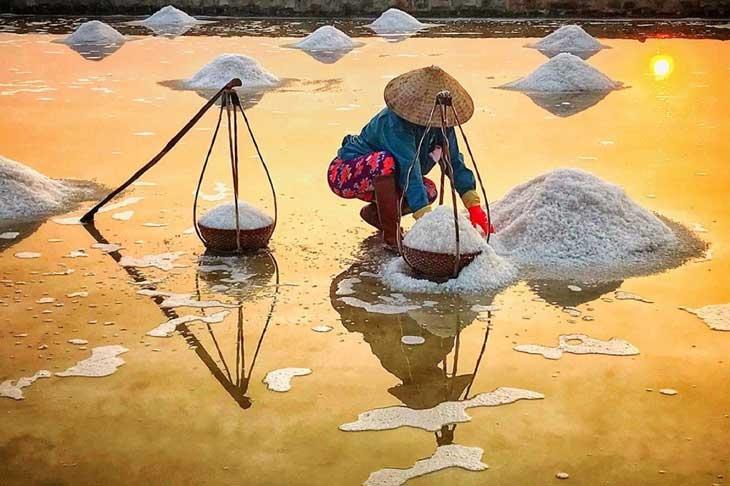 Những mùa muối ...