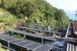 SolarBK cạnh tranh bằng sự khác biệt