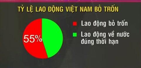 lao dong xuat khau khong tro ve vi sao