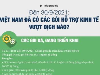 Việt Nam đã có các gói hỗ trợ kinh tế vượt dịch nào?