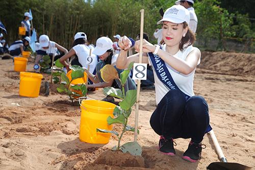 Hoa hậu Đại dương đội nắng trồng cây