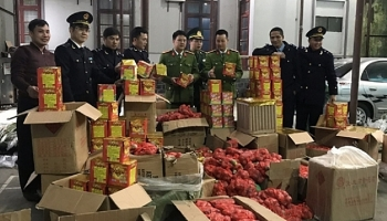 Lạng Sơn: Thu giữ gần 1 tấn pháo nổ