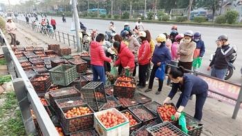 Bộ Công Thương: Khẩn cấp chung tay gỡ khó cho nông sản vùng dịch
