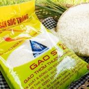 Thương vụ Việt Nam tại Australia quyết liệt đòi lại thương hiệu gạo ST 24, ST 25