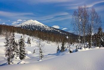 Nắng nóng kéo dài ở Siberia khiến 1,15 triệu ha rừng bị thiêu rụi