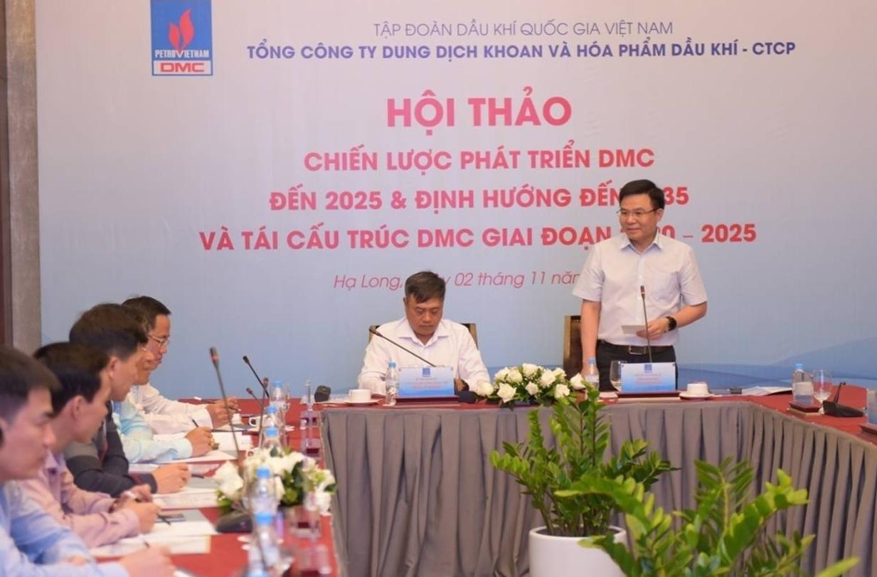 dmc chien luoc phat trien den 2025 dinh huong den 2035 va tai cau truc giai doan 2020 2025