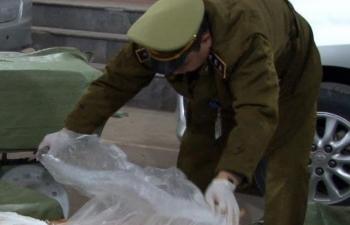 Chặn bắt gần 1 tấn nầm lợn thối tại Lạng Sơn
