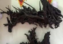 Những thú chơi 'đốt tiền' ngày Tết của đại gia Việt