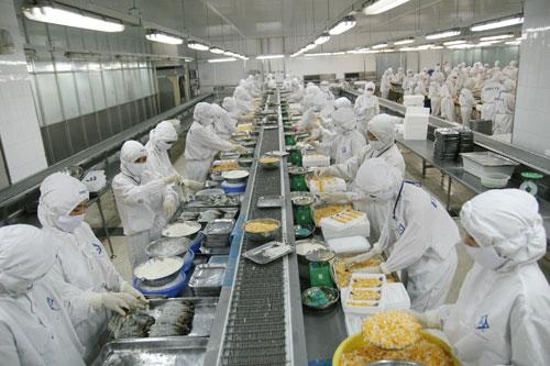 Tập đoàn Thủy sản Minh Phú: Tiết kiệm nhiều năng lượng