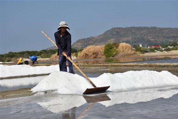 Xuất cấp muối trắng hỗ trợ người dân Hà Tĩnh bị thiên tai