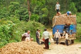 Ngân hàng Chính sách xã hội: 10 năm vì người nghèo