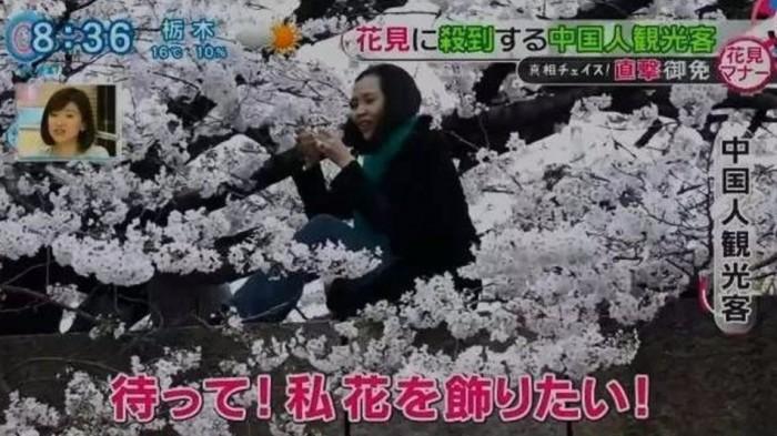 """Người Nhật kêu gọi lập """"khu riêng"""" cho du khách Trung Quốc"""