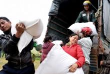 Cấp phát gạo dự trữ cho người dân bị ảnh hưởng do cá chết