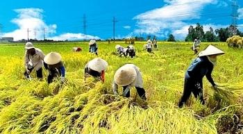 Hoàn thiện Kế hoạch phát triển kinh tế tập thể, hợp tác xã
