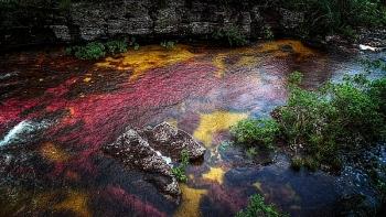 """Chiêm ngưỡng dòng sông """"cầu vồng"""" ở Colombia"""