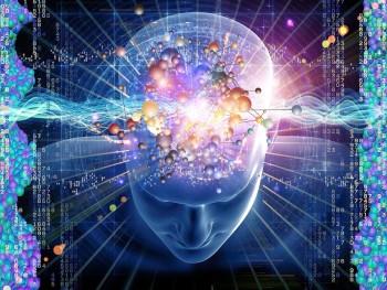Bí mật chưa từng biết về bộ não người