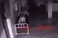 video rung ron hon lia khoi xac trong benh vien