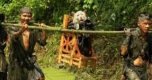 """Độc đáo lễ hội """"rước chó"""" tại Trung Quốc"""