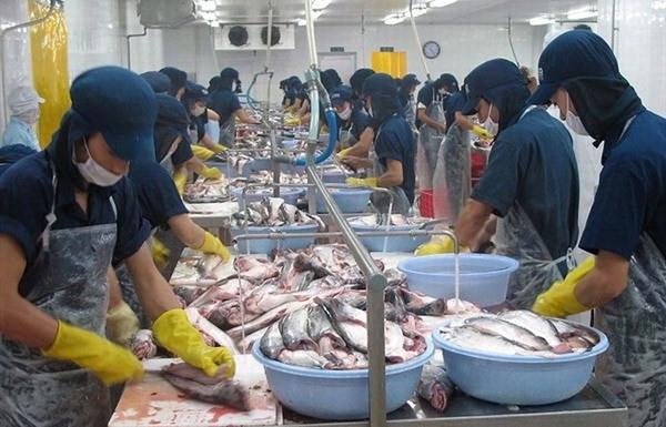 Doanh nghiệp Việt đối mặt với rủi ro thương mại quốc tế ngày càng tăng